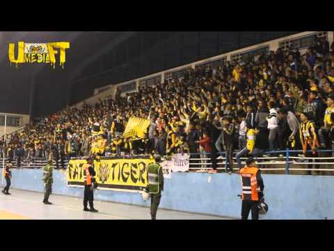 ULTRAS FATAL TIGERS: AMBIANCE DU MATCH MAS VS irt (SECTION BASKETBALL)